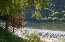 Camping on banks of Salmon River