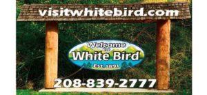 White Bird Chamber Magnet