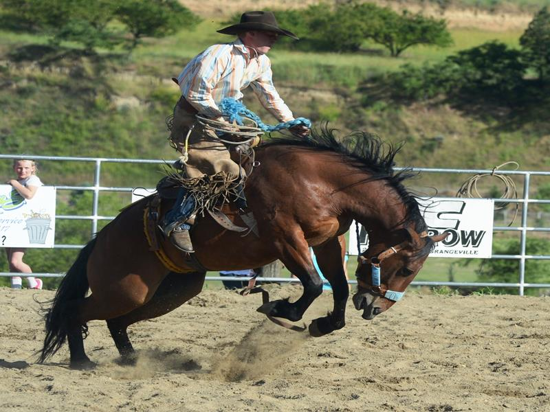 Rodeo 2017 Ranch Bronc - Konnyr Marek